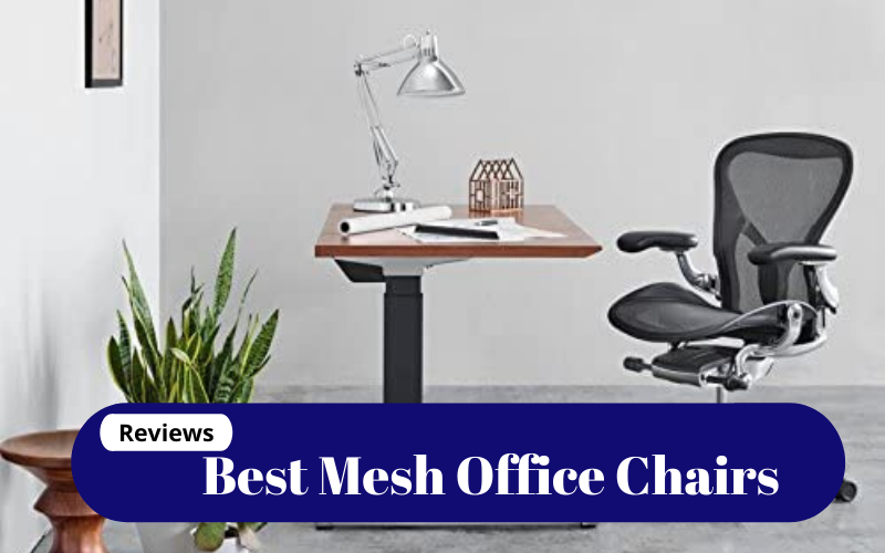 Best Mesh Office Chairs Of 2021 – Reviews & Buying Guide