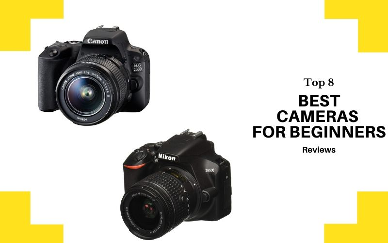 Best Cameras For Beginners – Top 8 Rated Reviews