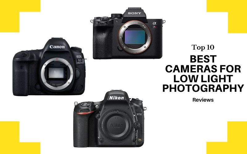 Best Cameras For Low Light Photography In 2020 – Top 10 Reviews