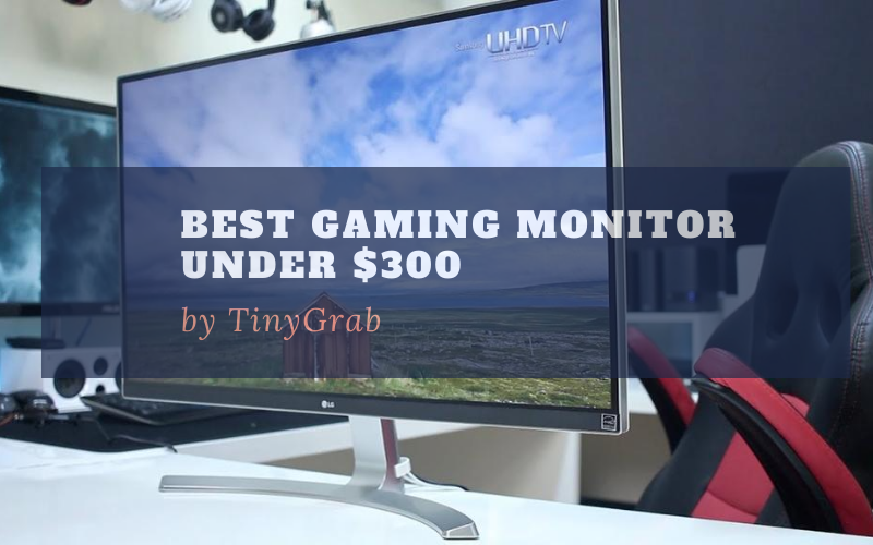 Best Gaming Monitor Under $300 In 2021 Review