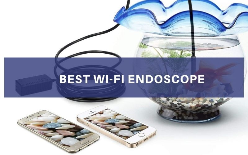 Top 5 Best Wi-Fi Endoscope In 2021 Review & Buying Guide