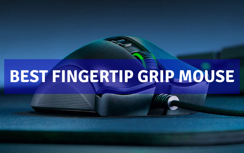 Top 7 Best Fingertip Grip Mouse On The Market 2021 Review