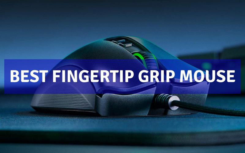 Best Fingertip Grip Mouse